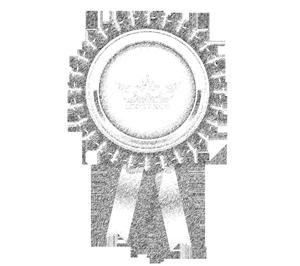 diplom-auszeichnung_marvin-fuerst